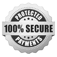 Secure Payments Logo