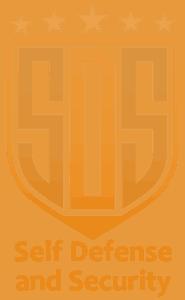 SDS Logo Orange